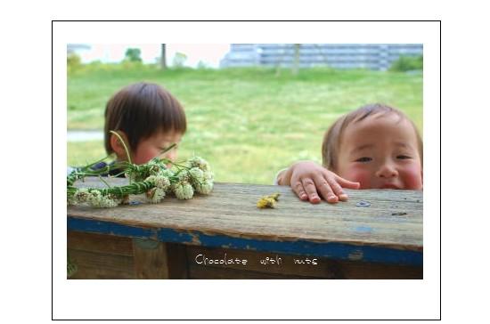 シロツメと息子.jpg