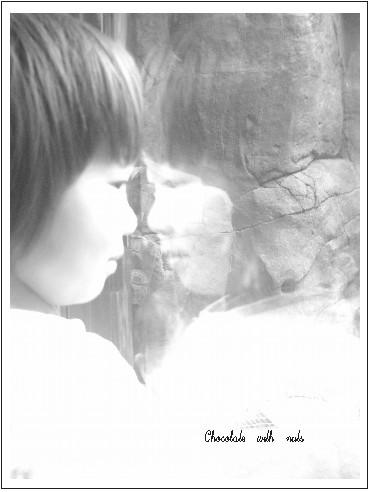 07 窓.jpg