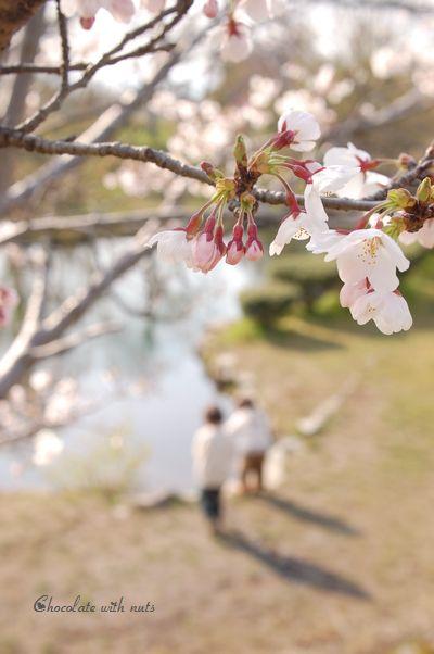 09 桜と子供たち.jpg
