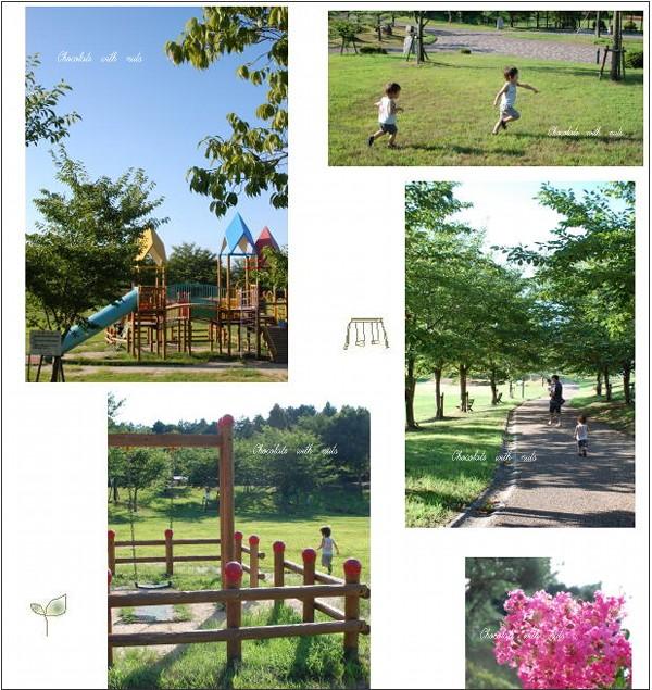 17 公園.jpg