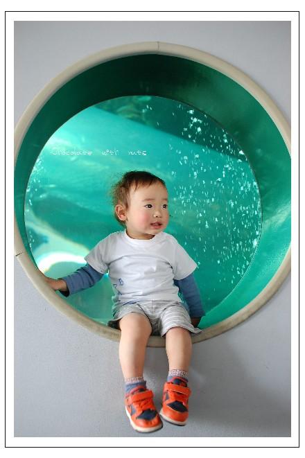 21 水族館.jpg
