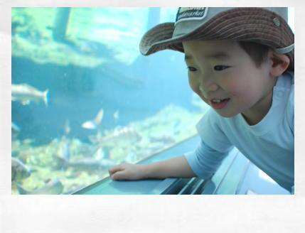 21 水族館1.jpg