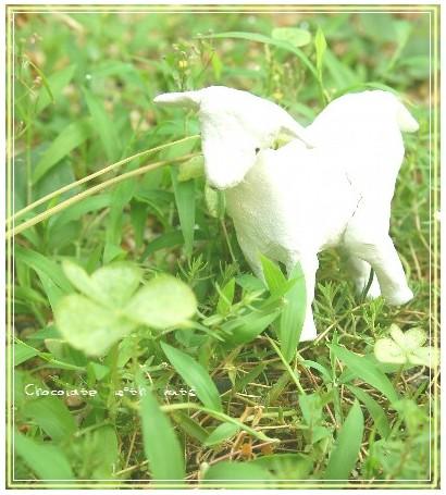 28 羊と葉っぱ.jpg