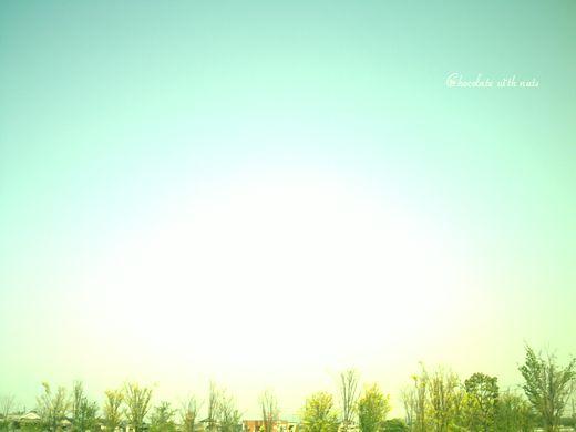 29 木と空.jpg