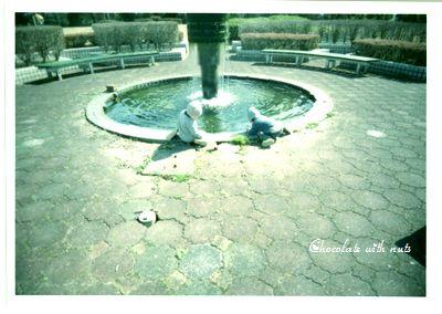 06 ポパカメ 噴水.jpg
