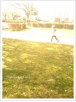 15 公園 芝生.jpg