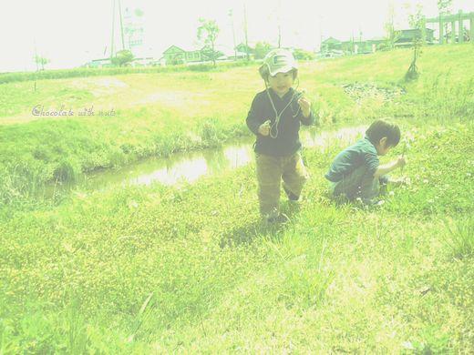 29 緑と子.jpg